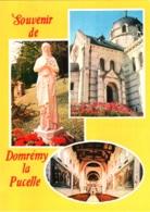 CPM 88 (Vosges) Domrémy-la-Pucelle - Souvenir Multivues TBE Village Natal De Jeanne D'Arc - Personnages Historiques