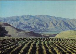 Armenia, Mountain Scenary, Some Type Of Agriculture(?), Soviet-era Issued C1970s Vintage Postcard - Armenia