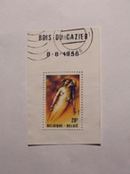 BELGIQUE   1981   LOT# 151 - Used Stamps