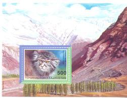 1996. Tajikistan, WWF,  Wild Cats,  S/s, Mint/** - Tadschikistan