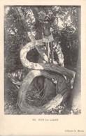 Centrafricaine . N° 51191 . Sur La Liane . Seins Nus - Centrafricaine (République)