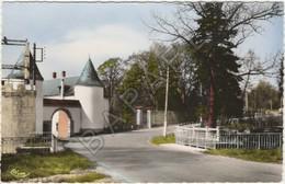 Sains-du-Nord (59) - L'Entrée Du Château - France