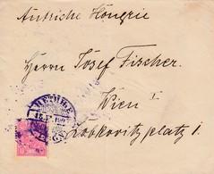 Montenegro 1905 Letter Cetinje To Austria, Scarce - Montenegro