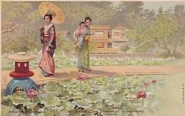 Japon Illustrée Geisha En Tenue Devant Champ De Nénuphars Chaussures Raoul - Pubblicitari
