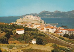 Cpsm La Citadelle De Calvi - Calvi