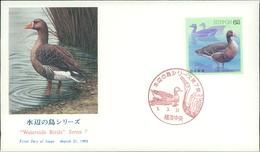 Japan FDC 1993, Waterside Birds, Wasservögel, Vögel, Oiseaux, Michel 2148 (2553) - FDC