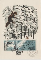 URSS Carte Maximum 1966 Animaux 3115 - 1923-1991 URSS