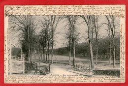 AMIENS - La Promenade De La Hotoie - - Amiens