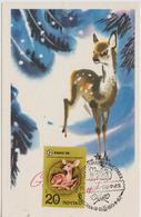 URSS Carte Maximum 1974 Animaux Faon 4034 - 1923-1991 URSS