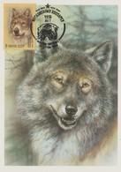 URSS Carte Maximum 1988 Animaux Loup 5559 - 1923-1991 URSS