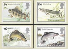 INGHILTERRA - BRITISH RIVER FISHES - 1983 - SERIE COMPLETA  4 CARTOLINE  - EDIT. HOUSE OF QUESTA - NUOVE - Francobolli (rappresentazioni)