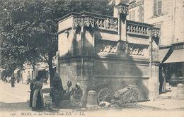 BLOIS - N° 136 - LA FONTAINE LOUIS XII - Blois