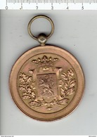 Medaille 024 - TENTOONSTELLING WACHTEBEKE 1901 - Tokens Of Communes