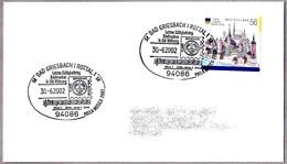 ULTIMO DIA DE VALIDEZ DE SELLOS EN DM - Last Day Of Validity Of Stamps In DM. Bad Griesbach 2002 - Post