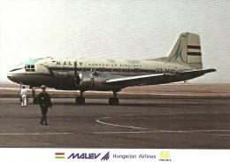 AIRPLANE AEROPLANE AIRCRAFT ILYUSHIN IL-14 * HUNGARIAN AIRLINES MALEV * PRAGUE CZECHOSLOVAKIA * Reg Volt 0146 * Hungary - 1946-....: Ere Moderne