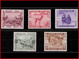 Congo 0209/13*  Jardin Zoologique  - H - - Congo Belge