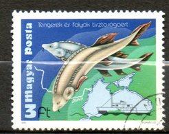 HONGRIE  Propreté Des Mers Et Rivieres 1979 N°2674 - Hungary