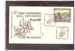 TEM3331 -     17°   PREMIO  INTERNAZIONALE  ASIAGO D'ARTE FILATELICA    /    ASIAGO  19.7.1987 - Exposiciones Filatélicas