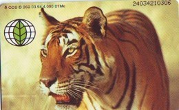 Télécarte  * Animal * TIGRE * TIGER (880)  FELIN *   Phonecard * Telefonkarte * TIJGER - Jungle