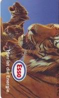 Télécarte  * Animal * TIGRE * TIGER (875)  FELIN *   Phonecard * Telefonkarte * TIJGER - Jungle