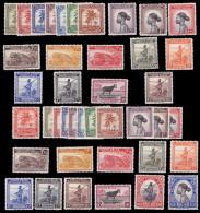 Congo 0228/67 SG Palmiers Without Gum / Sans Gomme - Congo Belge