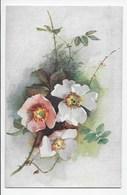 Wild Roses  - Tuck Oilette 9839 - Flowers