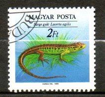 HONGRIE  Reptil 1989 N° 3223 - Hungary