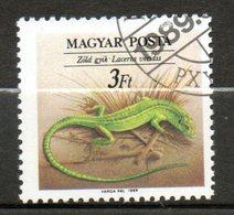 HONGRIE  Reptil 1989 N° 3224 - Hungary