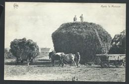 """+++ CPA - Agriculture - """"Après La Moisson"""" - Attelage Agricole - Ferme Fermier  // - Attelages"""