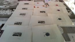 11 épreuves De Luxe. Plus Une Et 2 Enveloppes - Gabon (1960-...)
