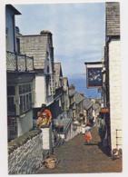AJ88 High Street, Clovelly, Devon - Clovelly