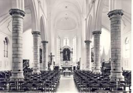 Zandhoven Binnenzicht Kerk - Zandhoven