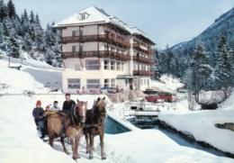 AL38 Kurhotel, Seefeld, Tirol - Animated, Horse, Sledge, Cars, Snow - Seefeld