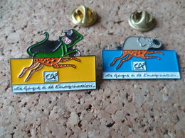 2 PIN'S  CREDIT AGRICOLE  ANIMAUX  SINGE  ELEPHANT  MONKEY - Banques
