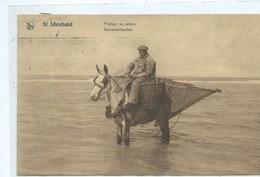 Koksijde Saint Idesbald Pêcheurs De Crevettes ( Staat Zie Scan : Carte Gondolée ) - Koksijde