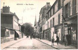 SCEAUX .... RUE HOUDAN - Sceaux