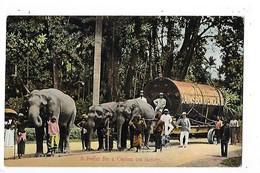 A Boiller For A Ceylon Tea Factory - Eléphants - Gainsboro England  -  L 1- ## TRES  RARE ## - Sri Lanka (Ceylon)