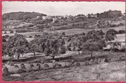 CPSM 51 MONTMIRAIL Vue Panoramique  * Format CPA - Montmirail