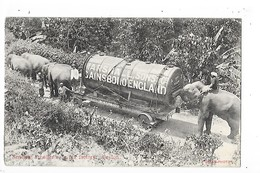 CEYLON  ( Sri Lanka )   Sending A Boiller To A Tea Factory - Eléphants - Gainsboro England-  L 1- ## RARE ## - Sri Lanka (Ceylon)