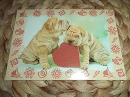 Hund Dog Sharpei Postkarte - Chiens