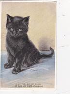 CPA Chat Noir Cat Catze Chaton Fantaisie Je Suis Un Porte-bonheur Illustrateur MAC - Katten
