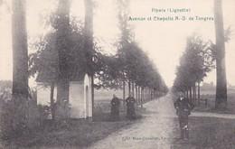 Pipaix Avenue Et Chapelle N D De Tongres - Other