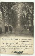 ST TROND  Souvenir L' Allée Des Soupirs. - Sint-Truiden