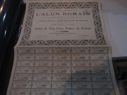 FRANCE  - SHARE -  L'ALUN ROMAIN  - 1878 - Aandelen