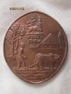 Ethiopie: Haile Selassie Conservation Pin Protect Your Land Shirt - Pin Lion Of Judah Rasta (chute) - Non Classés
