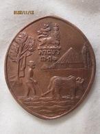 Ethiopie: Haile Selassie Conservation Pin Protect Your Land Shirt - Pin Lion Of Judah Rasta (chute) - Non Classificati