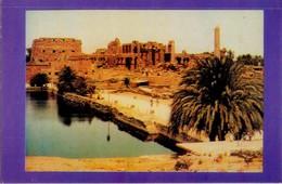 POSTAL DE EGIPTO, THEBES, HESHAM SAAD. (348) - Historia