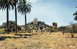 Annaba Bône CIM Ruines Romaines Et Basilique Saint St-Augustin - Annaba (Bône)