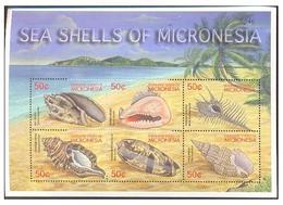 MICRONESIA SHEET MARINE LIFE SEASHELLS SHELLS COQUILLAGES CONCHAS - Conchiglie