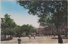 Afrique : DJIBOUTI : La  Place   Ménélick - Gibuti